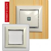 Рамка Valena 1-я Белый/Серебрянный штрих