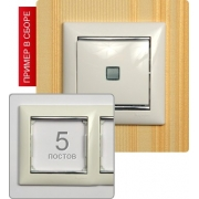 Рамка Valena 5-я Белый/Серебрянный штрих